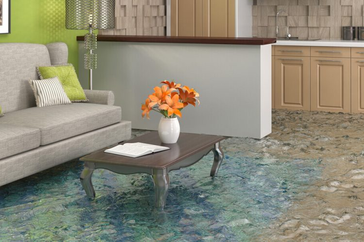 flooded living area